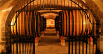 Chateauneuf du Pape Wine Tour
