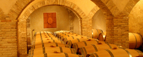 wine cave tour
