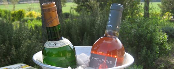 wine tasting wine bottles