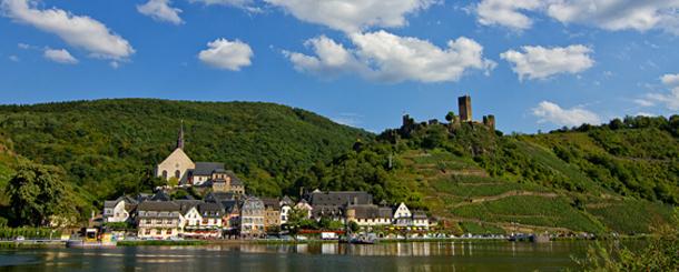 germany wine vinyard