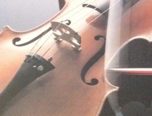 Châteauneuf-du-Pape: A 13-Varietal Symphony