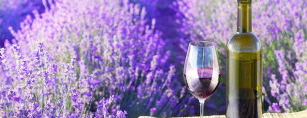 Wine in Provence featured in Tripadvisor subsidiary, Cruise Critic.
